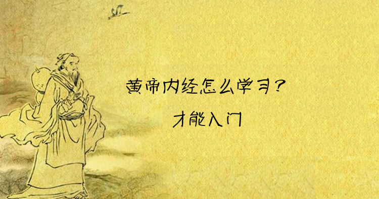 黄帝内经怎么学习才能入门?闲小豆陈老师谈学习黄帝内经的关键要点